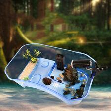 Tank Turtle Reptile Aquarium Lake Platform Built Habitat In Water Fish Small
