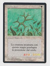 MTG Magic Sigillo Verde - Green Ward - 1ª Ed. Italian Revised FBB - 1994