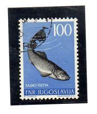 Yugoslavia Fauna Peces valor del año 1954 (BD-288)