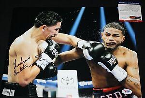 Leo Santa Cruz signed 11 x 14,  WBC World Champ, IBF, PSA/DNA X41857
