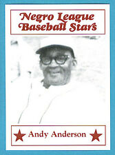 Fritsch Negro League Baseball Stars Singles: #41 Andy Anderson
