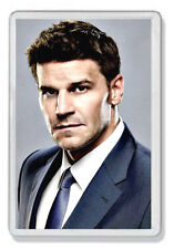 David Boreanaz (Bones, Angel) Fridge Magnet *Great Gift*