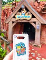 Disney Parks I Conquered Splash Mountain Pin NEW RELEASE Brer Rabbit Brer Fox