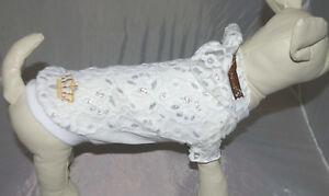 8967_Angeldog_Hundekleidung_HundeBluse_Pulli Hund Kleid_Chihuahua_RL25_XS kurz