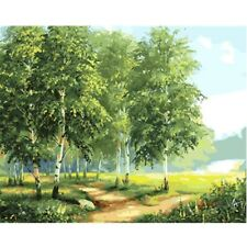 Paint By Number Kit Birches Trees Nature Landscape DIY Picture 40x50cm Canvas