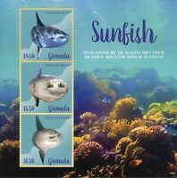 Grenada 2019 MNH Ocean Sunfish 3v M/S Corals Fish Fishes Marine Stamps