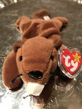 BUCKY THE BEAVER BEANIE BABY Rare! Mint! W/ Errors! PVC 6-8-95 ESTATE COLLECTION