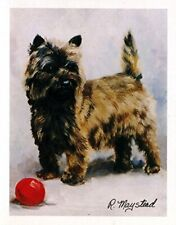 Cairn Terrier with Ball Notecards 6 Note Cards & 6 Envelopes By Ruth Maystead