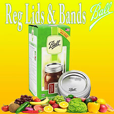 Ball Lids & Bands 12/Pkg-Regular Mouth Silver -30000