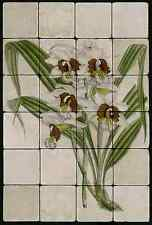 1624 Phajus Tuberculus Orchid  Mural Tumbled Marble Tiles Kitchen Ideas