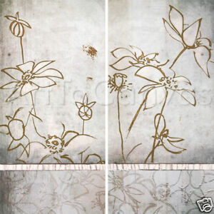 TOUCH OF SPRING I (18x36) and SPRING II (18x36) SET by ROBERT LACIE 2PC CANVAS