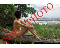 Nude Female Model Sitting on Mountain log, Color fine art photo print 8x10