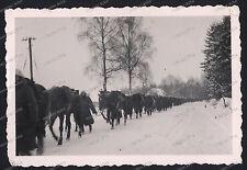 Kavallerie-Vor Warschau-Polen-Polska-Wehrmacht-2.WK-