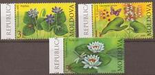 MOLDOVA 2008 WILD  FLOWERS  MNH