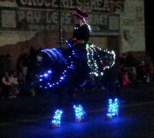 Horse and Rider Lights Battery Power LED Parade Show Night Ride Rodeo
