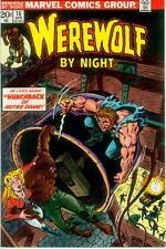 Werewolf by Night # 16 (Mike Ploog) (USA, 1974)