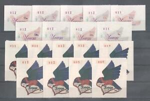 (873622) Birds,  - odd sized -, Parrot, Tonga