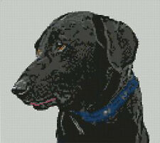 "Black Labrador Counted Cross Stitch Kit 9"" x 8"" 23cm x 20.7cm D2142"