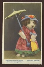 DOG dressed up Artist drawn comic Swiss PPC Apres Moi Le Deluge