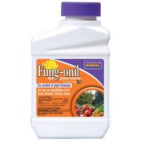 Bonide 880 Concentrate Fung-onil Multi-Purpose Fungicide, 16 Oz