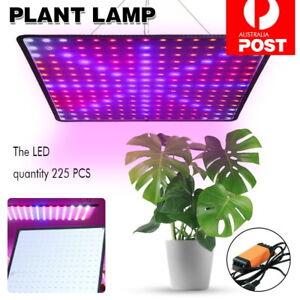 2000W 225 LED Grow Light Hydroponic Kits Growing Lamp Plant Flower Veg Indoor AU
