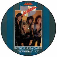 """NEW! DOKKEN BURNING LIKE A FLAME Limited Edition 12"""" VINYL Picture Pic Disc"""