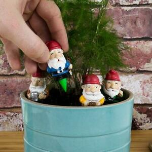 Mini Plant Pot Gnomes Set of Four Planter Garden Decoration