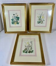 Set of 3 Framed NURSERY ROOM Litho Matted Prints - Mice In Garden Theme