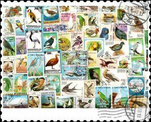 Birds : 300 Different Stamps Mixture