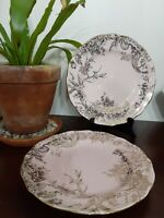 222 FIFTH ADELAIDE PINK GOLD DINNER PLATES Set of 3 Floral Bird