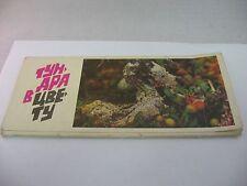 Vintage USSR Romania Info Color Flower Cards (8) тунара в цвету TUNARI IN BLOOM