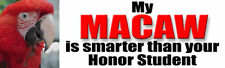 MY MACAW IS SMARTER THAN HONOR STUDENT Parrot Sticker