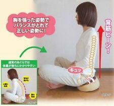 JAPAN OSAMA PELVIS/PELVIC CORRECTION SIT CUSHION POSTURE CORRECTOR HEALTH CARE