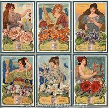 Chromo Liebig Sang. 713 ITA I Simboli dei Fiori ANNO 1902