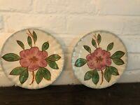 Vintage Set Of 2 Fondeville Blue Ridge Potter Hibiscus Salad Desert Plates