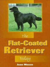 Flat-Coated Retrievers Today