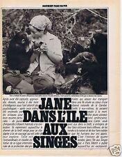 Coupure de presse Clipping 1981 Jane Carter dans l'ile aux Singes  (8 pages)
