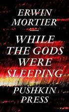 While The Gods Were Sleeping: By Erwin Mortier