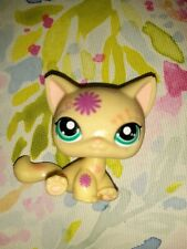 Littlest Pet Shop Yellow Gold Yellow Cat Green Eyes Flowers Cute #920 Lps