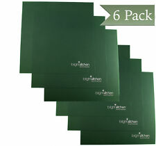"""Set of 6 - 14"""" x 14"""" Silicone Sheets for Excalibur Dehydrator Bright Kitchen"""