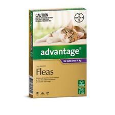 Advantage Purple 6 Pack Large Cats over 4kg for fleas