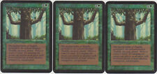 Ironroot Treefolk - Alpha X3 MTG
