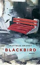 Blackbird: Roman von Brandt, Matthias | Buch | Zustand gut
