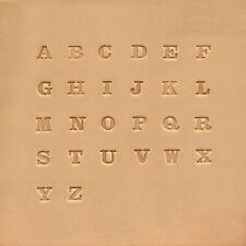 """Ivan Leathercraft lot de lettres à frapper avec poignée de tampon 6mm 1/4""""*NEUF*"""
