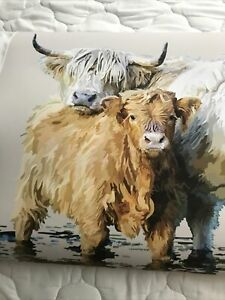Highland Cow Picture 16/23 Inches