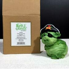 Enesco's Home Grown 4017526 Halloween Cabbage Dog or Pig Pirate Resin Figurine