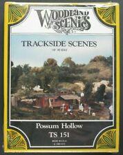 Woodland Scenics 1/87 Ho Scale Possum Hollow Scene Item No. TS 151