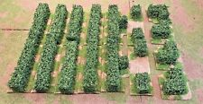 40mm,  Hedge  Set, 16pc  PAINTED