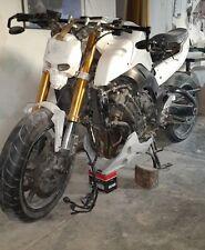 PleiAdesCustomz Skull  Streetfighter Custom Motorcycle Headlight MASK Fairing