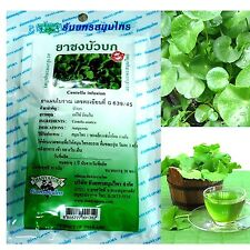 100% CENTELLA ASIATICA INFUSION TEA GOTU KOLA BRAIN POWER MEMORY : 20 TEABAGS
